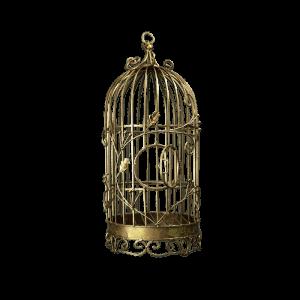 Dekoverleih Vogelkäfig gold
